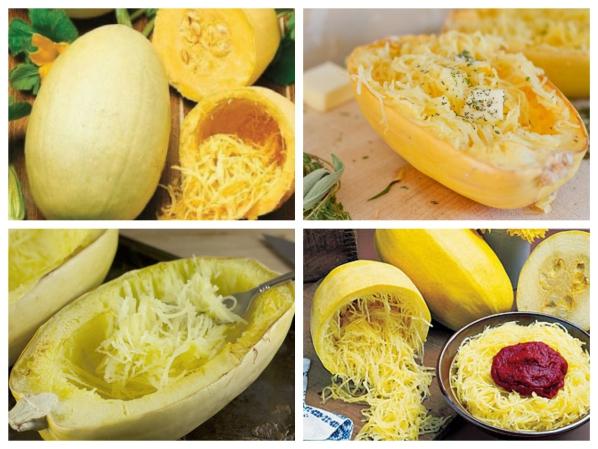Hạt Giống Bí Trộn Gỏi, Bí Sợi Mì Spaghetti Tivoli